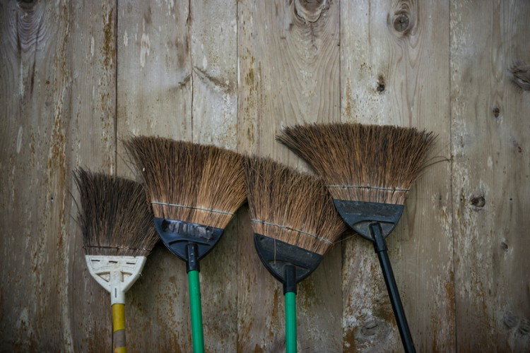 Selection of brooms standing at wooden wall.