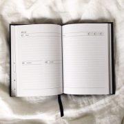2017-diary-internals-1