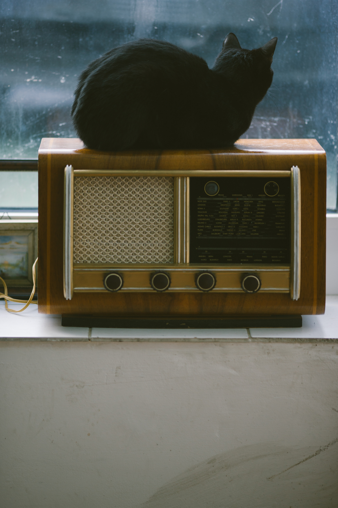 Black cat sitting on a retro radio