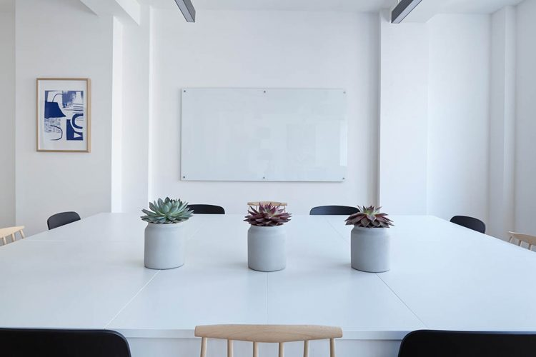 Office space and three indoor plants upon a table