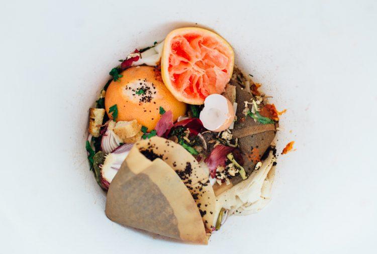 Food scraps in a kitchen bin